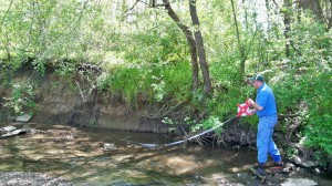 Before: Project Manager Andrew Dzurko surveys erosion along Shupe Run